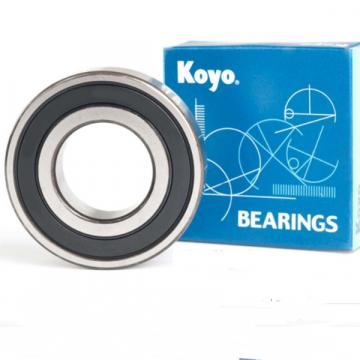 Cylindrical Roller Bearings--4R6020
