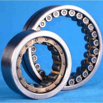 SL02-4836 Double Row Full Complement Roller Bearing 2018 TOP 10