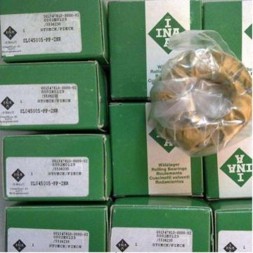 SL014876    INA Bearing 2018 latest update