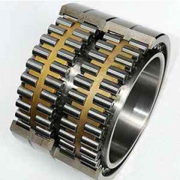 RS-5040  Full-complement Fylindrical Roller Bearings FAG