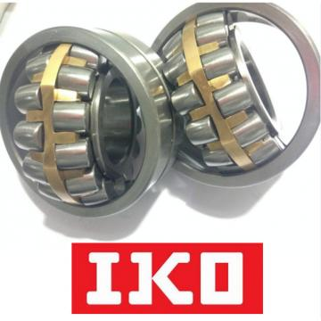DHK2516 Roller Bearings  IKO