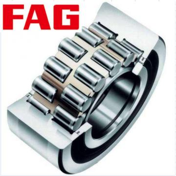 NNCF4864V  Full-complement Fylindrical Roller Bearings FAG