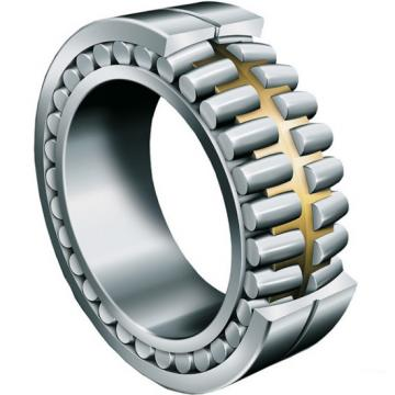 RSF-4820E4  Full-complement Fylindrical Roller Bearings FAG